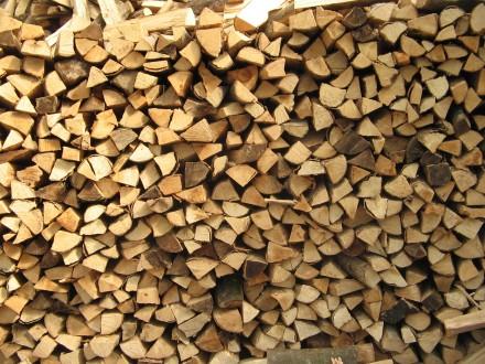 Miglior legna da ardere per stufa