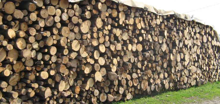 Legna da ardere rescaldina condizionatore manuale for Vendita legna da ardere